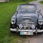 Manfreds coole Kisten - Austin Healey